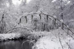 33c 1月横向俄国温度ural冬天 俄国 免版税库存图片