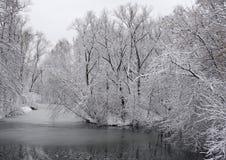33c 1月横向俄国温度ural冬天 俄国 库存照片