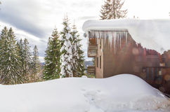 33c 1月横向俄国温度ural冬天 假日村庄在森林 免版税库存图片