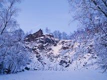 33c 1月横向俄国温度ural冬天 冬天冷淡的树冠上反对黑暗的天空在森林里 库存照片