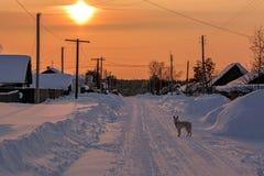 33c 1月横向俄国温度ural冬天 冬天日落在多雪的村庄 免版税库存图片