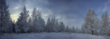 33c 1月横向俄国温度ural冬天 冬天 雪和霜 免版税图库摄影