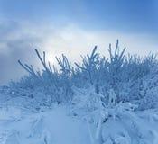 33c 1月横向俄国温度ural冬天 冷冬天日落 库存照片