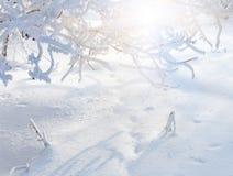 33c 1月横向俄国温度ural冬天 冷冬天日落 免版税库存图片