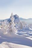 33c 1月横向俄国温度ural冬天 包括的冷杉雪结构树 山脉Zyuratk 库存照片