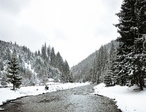 33c 1月横向俄国温度ural冬天 喀尔巴汗,乌克兰 图库摄影