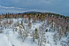 33c 1月横向俄国温度ural冬天 国家公园Taganay,俄国 库存照片