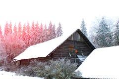 33c 1月横向俄国温度ural冬天 在城市之外的晴天 库存照片