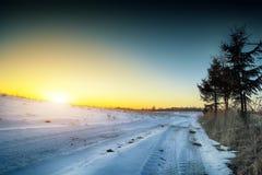 33c 1月横向俄国温度ural冬天 在泥潭的轮子轨道在冬天 图库摄影