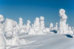 33c 1月横向俄国温度ural冬天 在登上Nuorunen的被雪复盖的树 库存照片