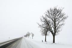 33c 1月横向俄国温度ural冬天 在路的斯诺伊条件 图库摄影