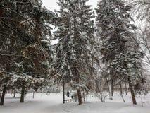 33c 1月横向俄国温度ural冬天 城市公园方式 雪和降雪 人步行 免版税库存图片
