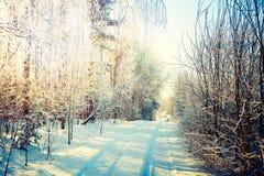 33c 1月横向俄国温度ural冬天 多雪的森林公路 库存图片