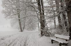 33c 1月横向俄国温度ural冬天 对Freibergsee的方式 免版税库存图片