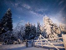 33c 1月横向俄国温度ural冬天 山村在乌克兰喀尔巴汗 免版税图库摄影