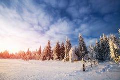 33c 1月横向俄国温度ural冬天 山村在乌克兰喀尔巴汗 免版税库存照片