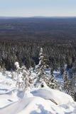 33c 1月横向俄国温度ural冬天 山脉Zyuratkul 积雪的冷杉tre 库存照片