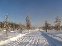 33c 1月横向俄国温度ural冬天 斯诺伊领域和冻树 免版税库存图片