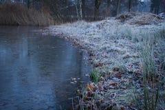 33c 1月横向俄国温度ural冬天 有一个池塘的城市公园在冬天 免版税图库摄影