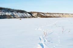33c 1月横向俄国温度ural冬天 本质的构成 图库摄影