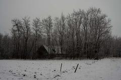 33c 1月横向俄国温度ural冬天 树和鬼的木房子 库存图片