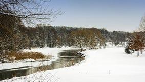 33c 1月横向俄国温度ural冬天 森林河被揭露的冰 免版税库存照片