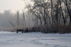 33c 1月横向俄国温度ural冬天 欧洲 免版税库存照片