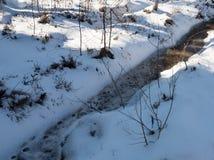 33c 1月横向俄国温度ural冬天 死的小河在一个晴朗的冬日 库存图片