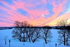33c 1月横向俄国温度ural冬天 河和森林的看法没有leav 库存图片