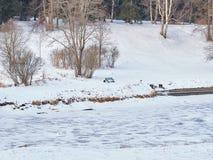 33c 1月横向俄国温度ural冬天 河是冰川覆盖和积雪覆盖的海滩 图库摄影
