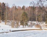 33c 1月横向俄国温度ural冬天 河是冰川覆盖和积雪覆盖的海滩 免版税库存图片