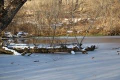 33c 1月横向俄国温度ural冬天 湖用与生长在雪的中部的树的冰盖 免版税库存照片