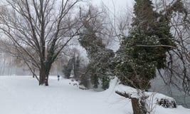 33c 1月横向俄国温度ural冬天 湖Leman,洛桑 图库摄影