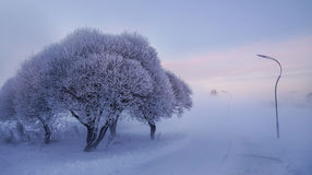 33c 1月横向俄国温度ural冬天 环境美化与在霜的美丽的树并且使模糊 免版税库存图片