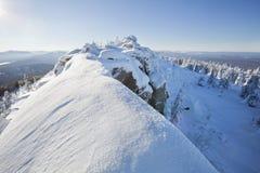 33c 1月横向俄国温度ural冬天 积雪的冷杉木和岩石 图库摄影