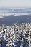 33c 1月横向俄国温度ural冬天 积雪的森林山脉Zuratkul 免版税图库摄影
