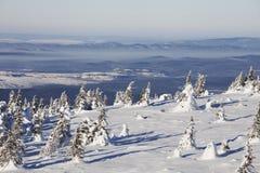 33c 1月横向俄国温度ural冬天 积雪的森林山脉Zuratkul 库存照片
