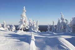 33c 1月横向俄国温度ural冬天 积雪的森林山脉Zuratkul 免版税库存照片