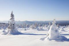 33c 1月横向俄国温度ural冬天 积雪的森林山脉Zyuratkul 免版税库存照片