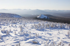 33c 1月横向俄国温度ural冬天 积雪的森林山脉Zyuratkul 免版税库存图片