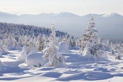 33c 1月横向俄国温度ural冬天 积雪的森林山脉Zyuratkul 库存照片