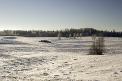 33c 1月横向俄国温度ural冬天 积雪的领域 库存照片