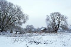 33c 1月横向俄国温度ural冬天 第一雪在村庄 免版税库存照片