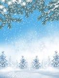 33c 1月横向俄国温度ural冬天 背景 雪 库存图片