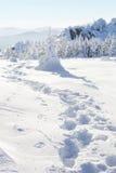 33c 1月横向俄国温度ural冬天 脚印雪时间冬天 库存图片