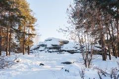 33c 1月横向俄国温度ural冬天 被日光照射了杉木森林和积雪的大石头 免版税库存图片