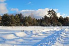 33c 1月横向俄国温度ural冬天 路在冬天森林里在一个晴天 库存图片