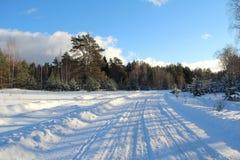 33c 1月横向俄国温度ural冬天 路在冬天森林里在一个晴天 免版税库存图片