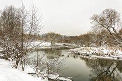 33c 1月横向俄国温度ural冬天 野鸭游泳在河 库存照片