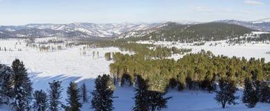 33c 1月横向俄国温度ural冬天 阿尔泰山全景 雪松森林 免版税库存图片